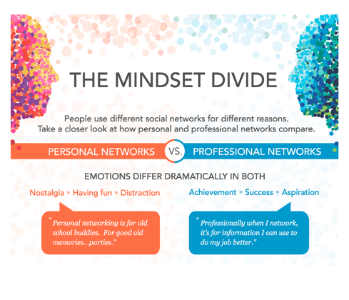 The Mindset Divide - Infographic