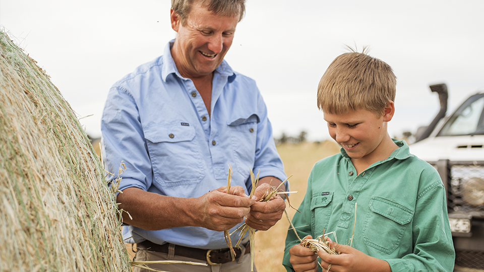 Father and son in field, This Australian Life