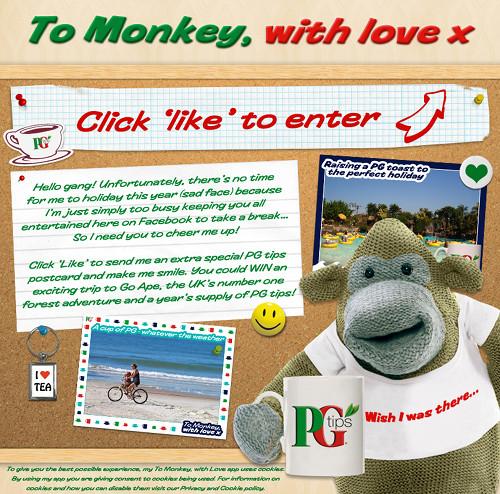 PG Tips FB Fans Send Monkey Their Love